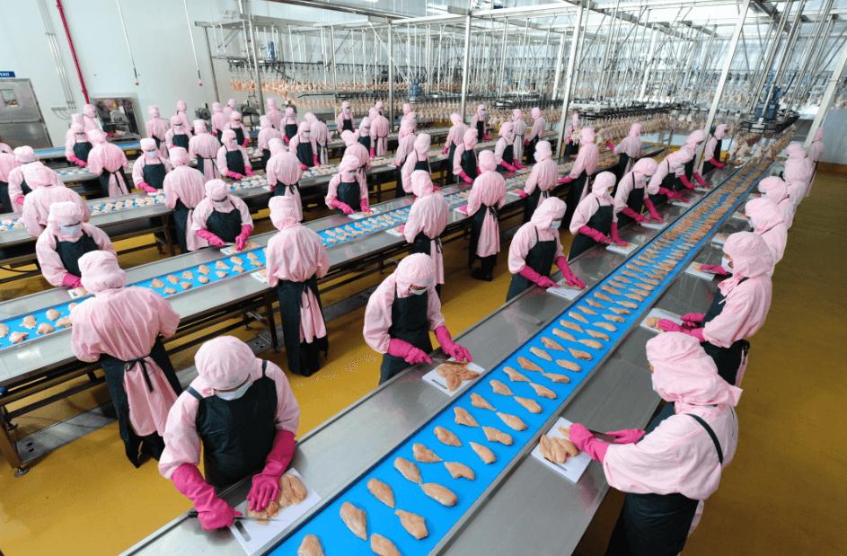 công nghiệp chế biến thực phẩm